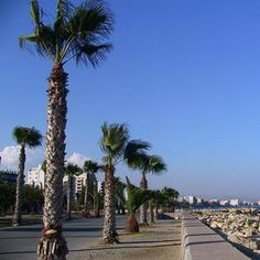 ae2ba1e646 Limassol or Lemesos is the second-largest city in Cyprus