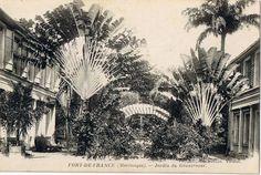 Le jardin du gouverneur ,Fort-de-France -  Carte postale, Collection Vatran -  Date inconnue