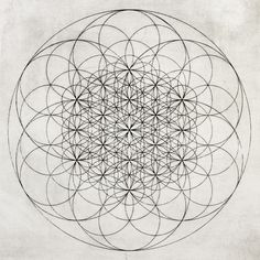 Sacred geometry. Circles.