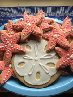 Starfish and Sand Dollar cookies