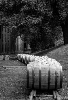 TITLE: Woodford Reserve Bourbon Barrel Track  ABOUT Woodford Reserve, the oldest and smallest distillery in Kentucky traces its origins to 1797 when Elijah Pepper began distilling in Woodford County. This National Landmark crafts Woodford Reserve Distiller's Select, the Official Bourbon of the Kentucky Derby. This photograph was taken sometimes in summer of 2013, while visiting the Woodford distillery for a scheduled photo shoot. This track is used to transport bourbon barrels in and out of…