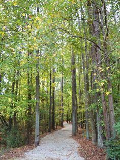 Listing of greenway trails through Kennesaw, GA