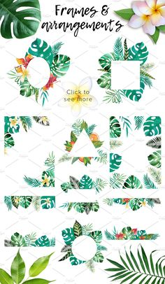 Tropic boom! watercolor design kit by beauty drops on @creativemarket