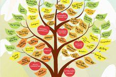 Influencer Relationship Imperatives