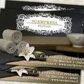 Tarjetas de Visita. Impresos personalizados - tarjetería  - Papelería - Regalos promocionales. Los Andes, Chile - Despachos a todo el país. www.proyectaideas.cl
