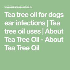 Treating Dog Ear Infection Tea Tree Oil