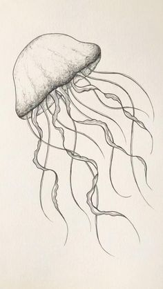 How to Jellyfish drawing. Sea draw tattoo How to Jellyfish drawing. Sea draw tattoo,drawings Related posts:What to do in Lesotho. Easy Pencil Drawings, Easy People Drawings, Sketches Of People, Art Drawings Sketches, Doodle Drawings, Drawing People, Animal Drawings, Disney Drawings, Sketch Drawing