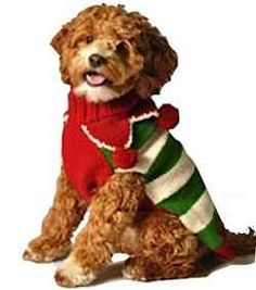 Adorable & Practical Christmas Sweaters and Hoodies for Dogs