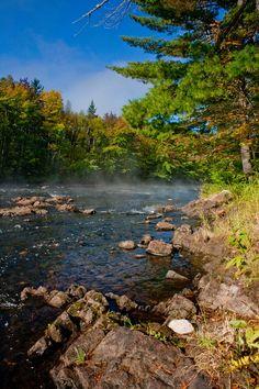 Samuel de Champlain Provincial Park Parks Canada, Canada Eh, National Park Camping, National Parks, Gros Morne, Samuel De Champlain, Riding Mountain, Lake Camping, Thousand Islands
