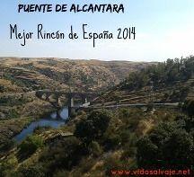 Mejor Rincón de España 2014 #Extremadura #Alcantara