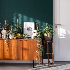 The little indoor pineapple farm in spotlight! What is your urban jungle plant of choice? Hallway Decorating, Interior Decorating, Cosy Living, Photography Studio Spaces, Filigranes Design, Gallery Wall Bedroom, Home Staging, Location Villa, Retro Room