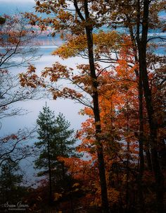 Acadia National Park Eagle Lake Bar Harbor, Maine | by Susan Garver Photography