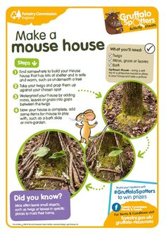 simple step by step mouse house making / with tips and info for kids / forest commission england Forest School Activities, Nature Activities, Outdoor Activities, Activities For Kids, Autumn Activities, Learning Activities, Forest Classroom, Outdoor Classroom, Outdoor School