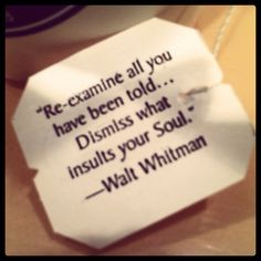 """""""Re-examine all you have been told... Dismiss what insults your Soul.""""   - Walt Whitman  #quotes #whitman"""