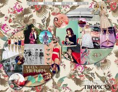 ss14 trend