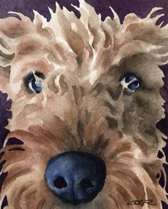 AIREDALE TERRIER Dog Art Print Signed by Artist DJ Rogers. $12.50, via Etsy.
