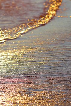 Golden sunset reflection on the waves. Beautiful. ᘡղᘠ