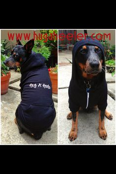 Hey, I found this really awesome Etsy listing at https://www.etsy.com/listing/153778918/hug-a-heeler-dog-hoodie
