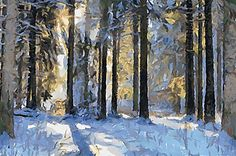 http://dap.mediachance.com/wp-content/uploads/2011/08/Winter2_DAP_Deep-Forest.jpg