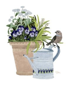 Pansies in a pot by Yuliya