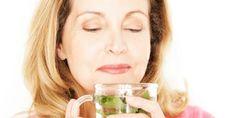 Wenn die Menopause naht, kann man viele der unangenehmen Symptome mit Kräutern lindern. Wir zeigen welche Heilpflanzen besonders wirksam sind in den Wechseljahren.