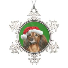 >>>The best place          Dachshund Christmas Ornament           Dachshund Christmas Ornament in each seller & make purchase online for cheap. Choose the best price and best promotion as you thing Secure Checkout you can trust Buy bestReview          Dachshund Christmas Ornament Review fro...Cleck See More >>> http://www.zazzle.com/dachshund_christmas_ornament-256120523343271844?rf=238627982471231924&zbar=1&tc=terrest