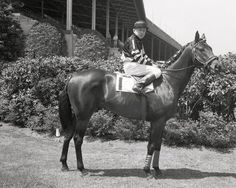 WAR ADMIRAL...the fourth winner of the US Triple Crown of Racing died on this day (October 30) in 1959. He is buried next to his father Man O War at the Kentucky Horse Park in Lexington, Ky.