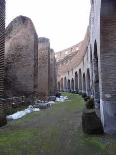 Italy - Rome - Colosseum