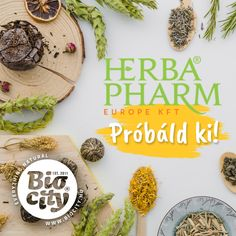 🌿Herba próba a Biocityben! 💚 Hétfőn a HerbaPharm látogat el hozzánk és hozza el nektek szuper gyógynövényes termékeit, kivonatokat, őrleményeket, homoktövis velőt, illetve krémeket. Ismerjétek meg és próbáljátok ki miért is olyan fantasztikusak! Várunk titeket október 12-én 12.30-17.30 között a herba csodákkal 🤗 Crochet Earrings
