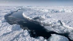 Future Commercial Fishing Banned at the North Pole