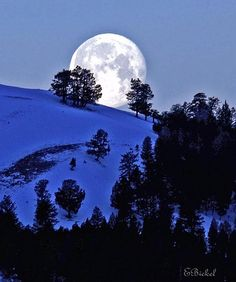 Moon set, Lamar Valley ~ Yellow Stone National Park, Wyoming