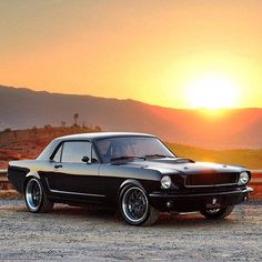 1965 Mustang by East Bay Muscle Cars 1965 Mustang, Mustang Cars, Ford Mustang Gt, Classic Mustang, Ford Classic Cars, Stance Nation, Jdm, Nissan, Lamborghini