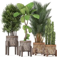 House Plants Decor, Patio Plants, Faux Plants, Green Plants, Plant Decor, Indoor Plants, Interior Design Plants, Interior Garden, Leaves Wallpaper Iphone