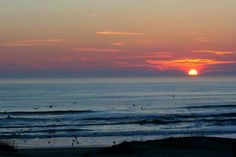 Outer Banks NC Local Artists Facebook post: Birds Diving at Sunrise, photographer unknown