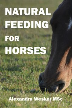 Feed your horse the healthy way! As the first book of its kind, Natural Feeding for Horses introduces a step-by-step feeding system based on how horses live in nature. Also included are example diet c