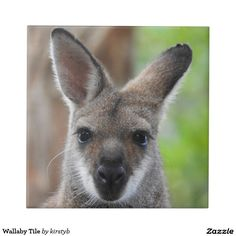 Wallaby Tile