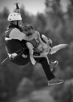 The avalanche search dogs team of the mountain rescue service Bavaria practice flying with their search dogs in the mountains in Mittenwald, Germany, on June 17, 2011. During the practice the search dog and their owners are winched down from a helicopter.