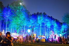 Electric Forest Festival This board is for all #EDMMusic Lovers who dig cool…