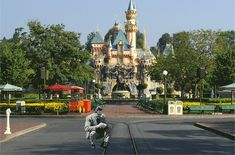 This Tumblr's owner created GIFs that place the Disney animation into real life Disney World parks, rides and attractions.