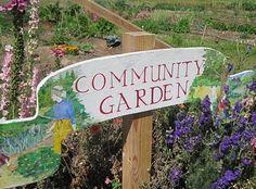 Community gardens help make Richmond a healthier city