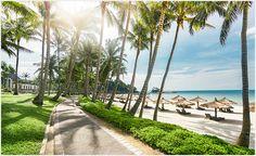 내 몸과 마음을 위한 궁극의 웰빙 휴가지,클럽메드 빈탄 아일랜드 리노베이션! Bintan Island, Crystal Clear Water, Romantic Getaway, White Sand Beach, Singapore, Gourmet Meals, Coast, Sidewalk, Entertaining