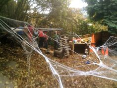 Teacher Tom - I love this blog post about emergent curriculum  - and love the idea of using spider web decorations in the yard!