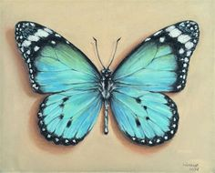 Butterfly In Pastel | Butterfly Painting, Butterfly