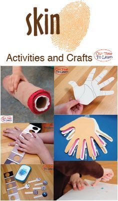 Activity ideas and crafts about skin for your human body unit. From the Our Time to Learn blog and About Me workbook, for ages 4-6, preschool, kindergarten, 1st grade, and home school.