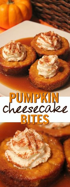 Pumpkin caramel cheesecake bites dessert recipe - this is such a delicious Fall pumpkin dessert idea!