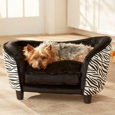 Penny Pet Bed in Zebra at Joss & Main