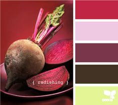 radishing (Yes, I know these are beets. But this is the title of the palette, so I'm sticking with it.)