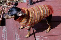 Min Pin Sweater Paradise: Autumn Stripes Crochet Min Pin Sweater