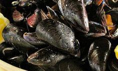 Moscioli of Portonovo: typical mussels