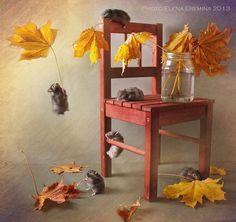 autumn tale by Elena Eremina on 500px
